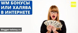 WM бонусы или халява в интернете