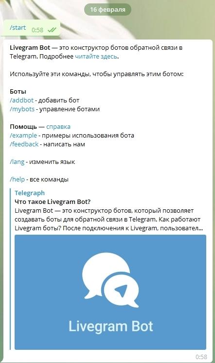 Интерфейс бота Livegram